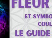 Fleur Symbolique Couleurs Guide Complet