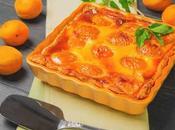 Flan Léger abricots