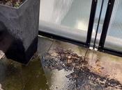 Recettes maison pour nettoyeurs terrasse afin garder tout étincelant