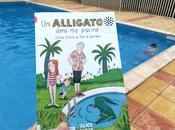 alligator dans piscine