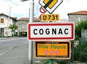 Carnet campagne Cognac