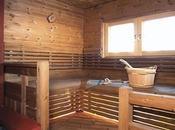 bois modifié thermiquement excellent produit substitution tropicaux