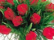 Bouquet tulipes Interflora NADI